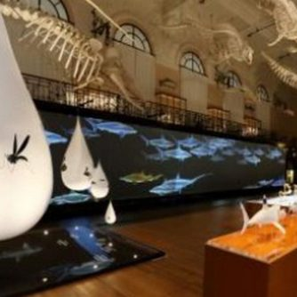 Expo Requins