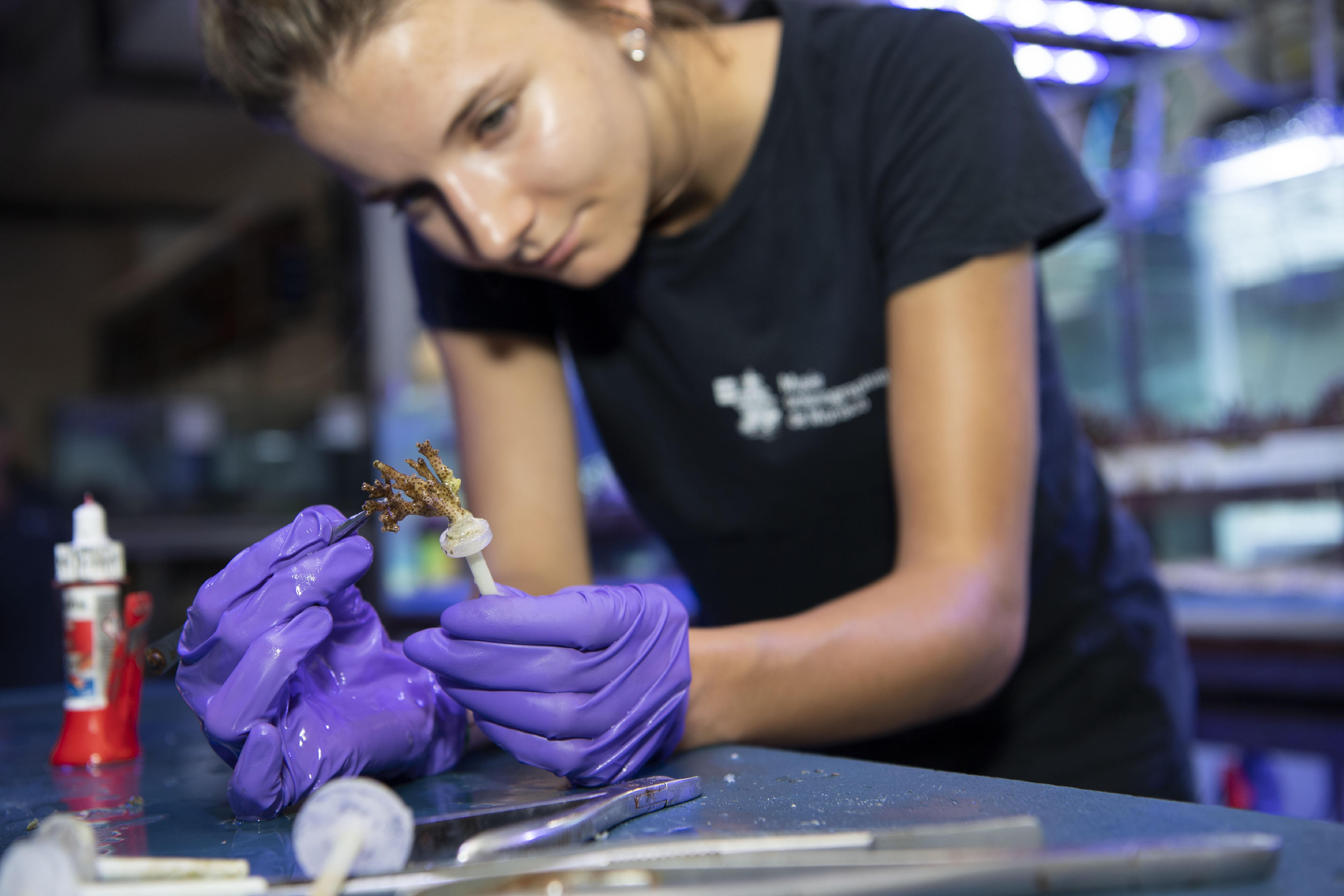 93_Aquariologiste-atelier-coraux_M_Dagnino