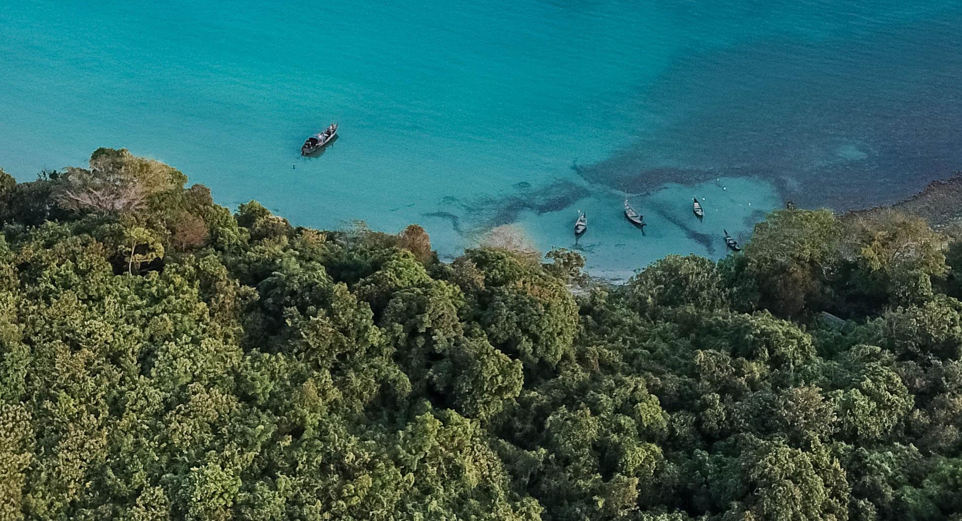 Un pas décisif pour la préservation de la biodiversité ?