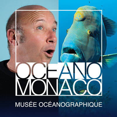 Institut_Oceanographique-Selfie-homme-napoleon