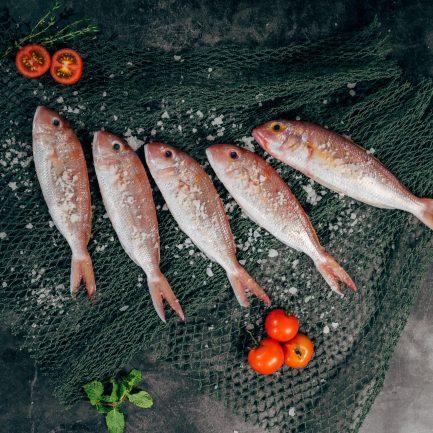 Gourmet-hoan-vo-789842-unsplash